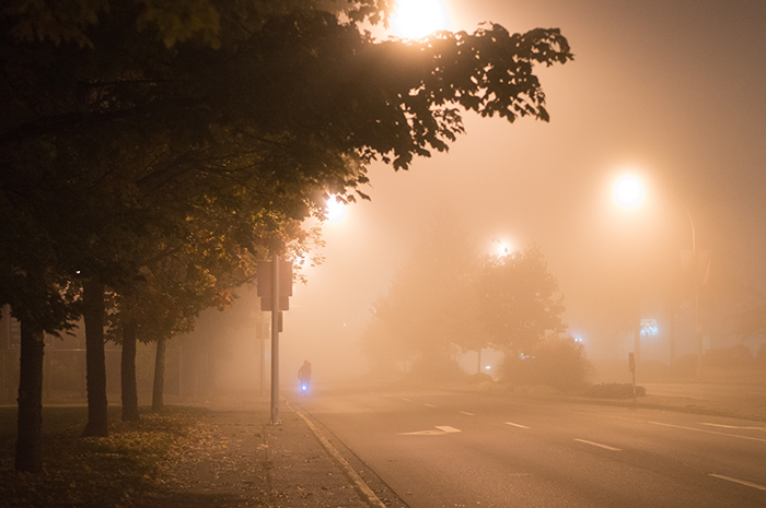 The foggy street