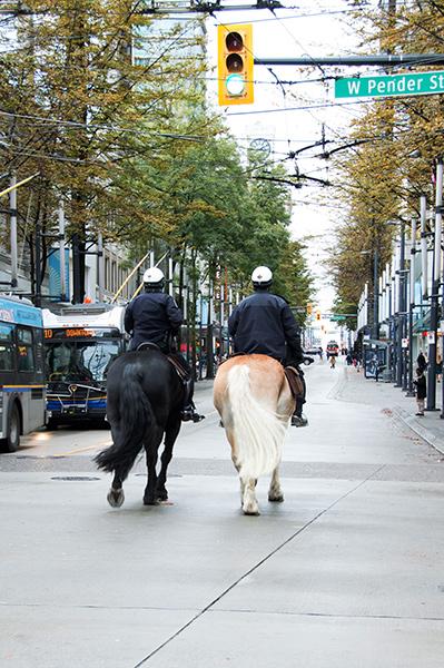 Horses on Pender Street