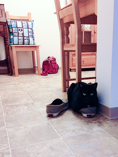 Stinky shoes are the best!